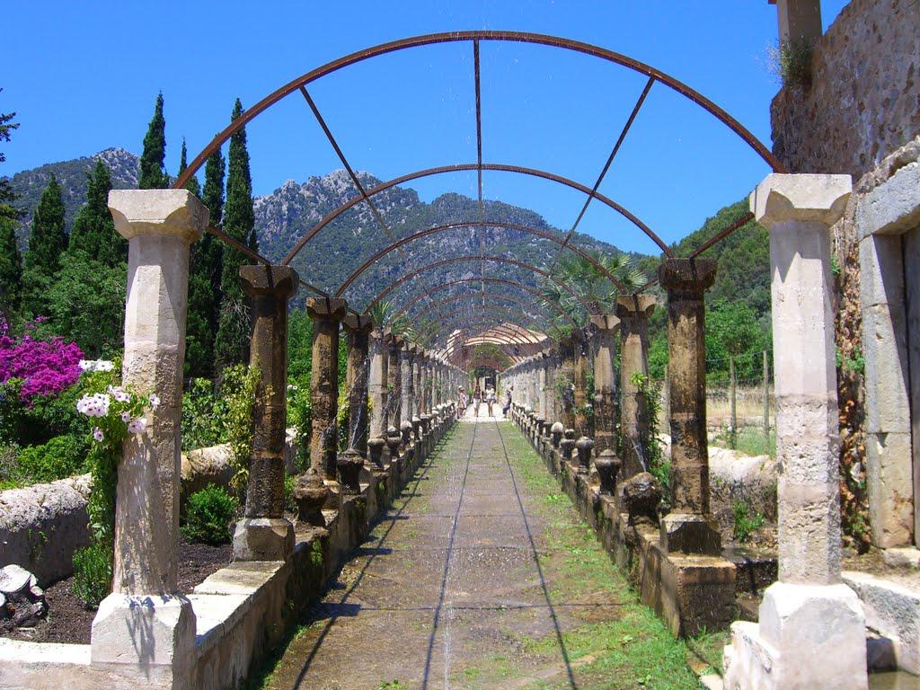 Die Umgebung von Palma – besonders beliebt bei Residenten und Familien…