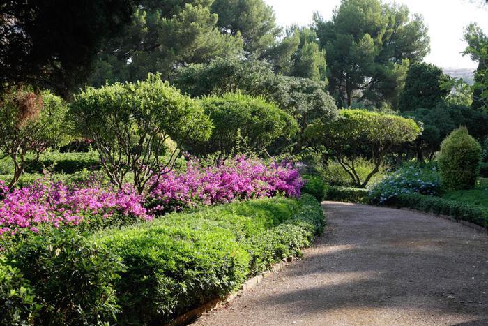 Zutritt zu den Marivent Gärten des Königspalastes jetzt möglich