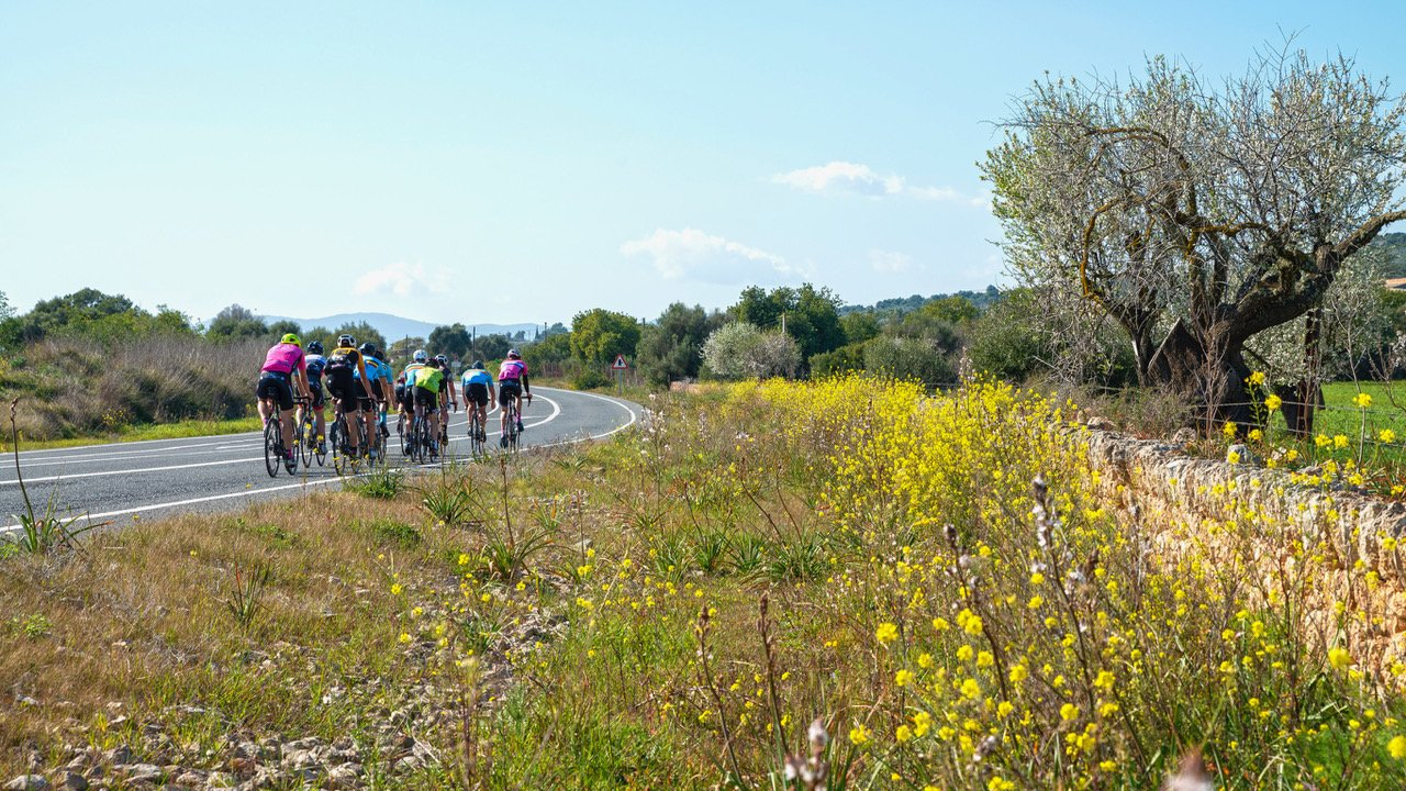 Mallorca's best bicycle tours – We take you to the most beautiful places!