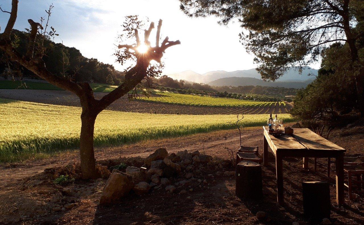 VIP Finca Experience Wine Tour
