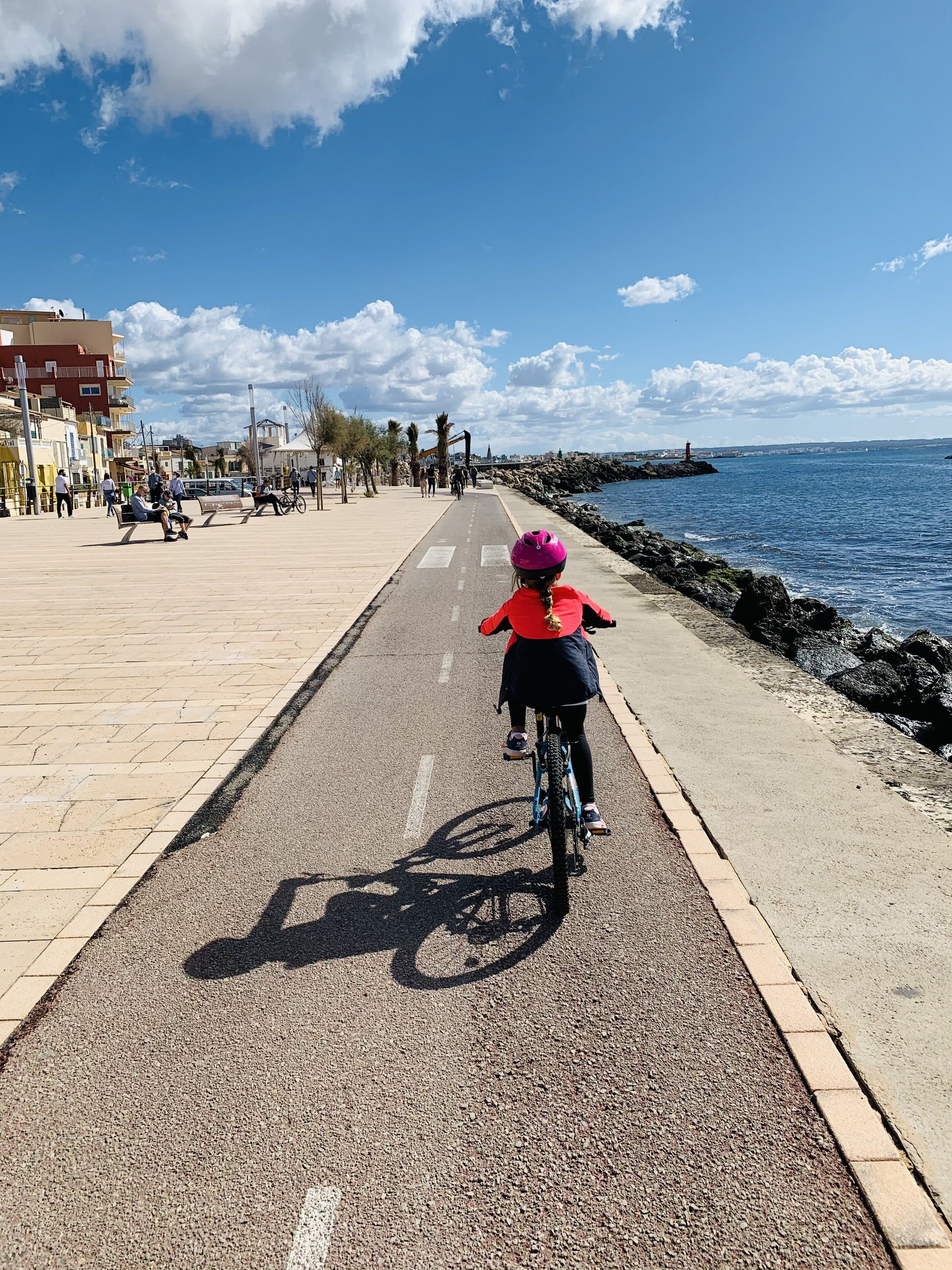 Discover Palma by Bike