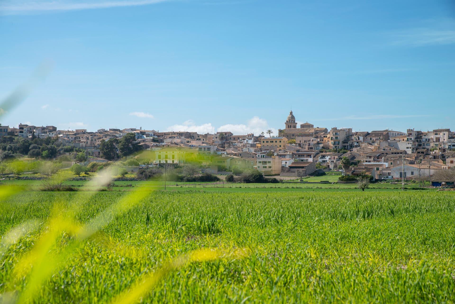Dörfer Mallorcas – wir stellen vor: Montuiri